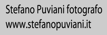 logo Stefano Puviani